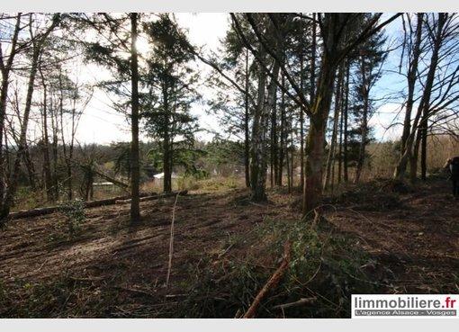 Terrain constructible à vendre à Saint-Dié-des-Vosges (FR) - Réf. 6722839