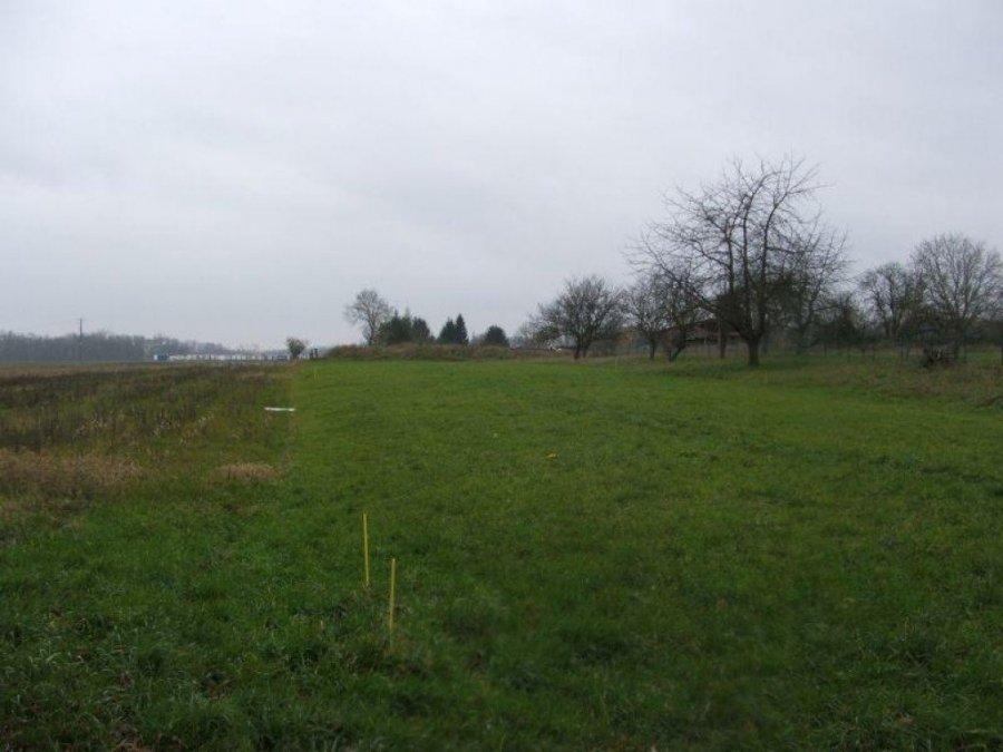 acheter terrain constructible 0 pièce 705 m² lunéville photo 1