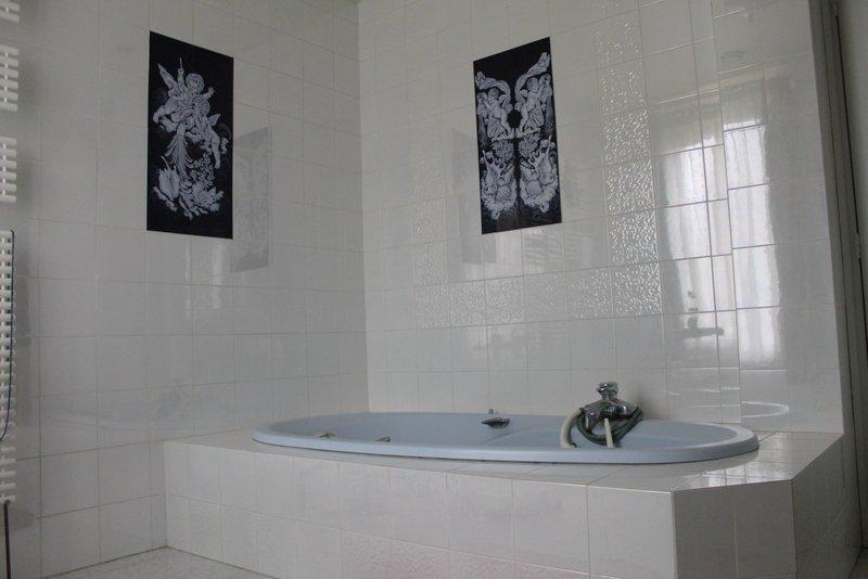acheter maison de maître 20 pièces 300 m² joudreville photo 7