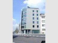 Bureau à louer à Luxembourg-Limpertsberg - Réf. 6458903
