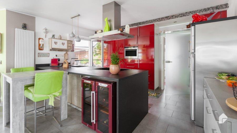 haus kaufen 6 zimmer 250 m² newel foto 4