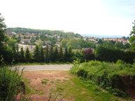 Terrain constructible à vendre à Saint-Dié-des-Vosges - Réf. 7194151