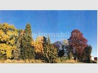 Terrain constructible à vendre à Féy - Réf. 6177847