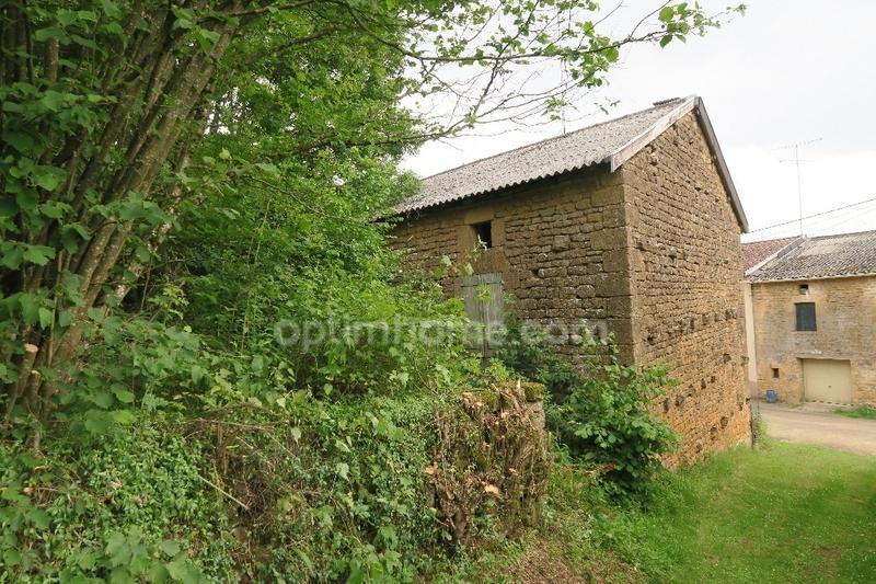 acheter maison individuelle 3 pièces 110 m² quincy-landzécourt photo 4