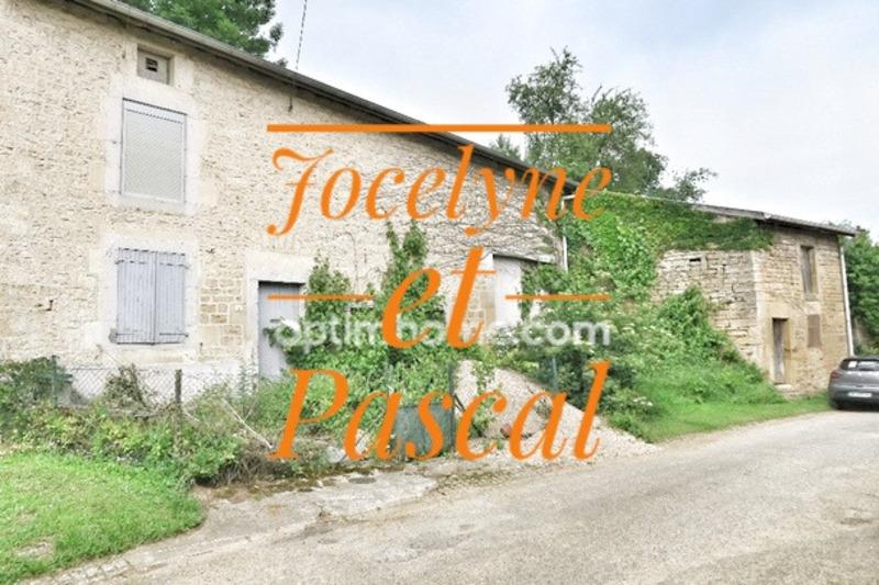 acheter maison individuelle 3 pièces 110 m² quincy-landzécourt photo 1
