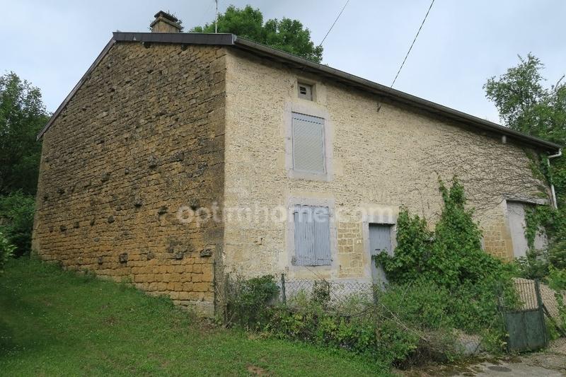 acheter maison individuelle 3 pièces 110 m² quincy-landzécourt photo 5
