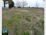 Terrain à vendre à Saumur - Réf. 5081655