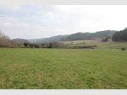 Terrain constructible à vendre à Nimshuscheid (DE) - Réf. 6377271