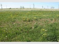 Building land for sale in Neuerburg - Ref. 6660935