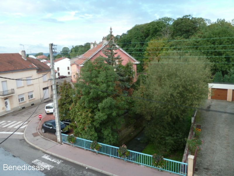 louer appartement 2 pièces 53 m² boulay-moselle photo 4