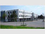 Bureau à louer à Luxembourg-Merl - Réf. 7103575