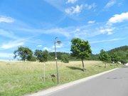 Bauland zum Kauf in Morbach - Ref. 5400919