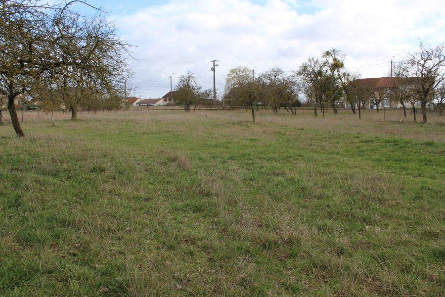 acheter terrain constructible 0 pièce 1400 m² hannonville-suzémont photo 3