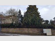 Terrain constructible à vendre à Audun-le-Roman - Réf. 7089751