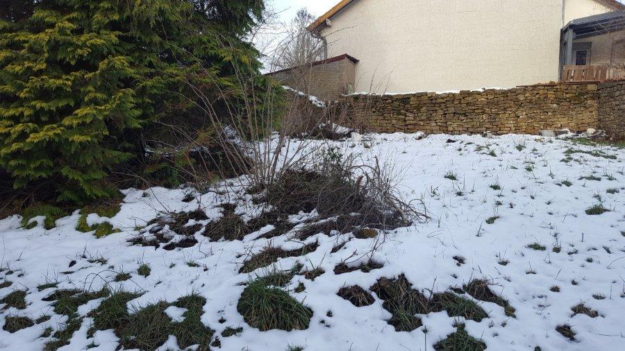 acheter terrain constructible 0 pièce 0 m² audun-le-roman photo 3
