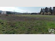 Terrain constructible à vendre à Creutzwald - Réf. 7163735