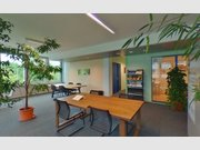 Bureau à louer à Windhof (Koerich) - Réf. 6624615