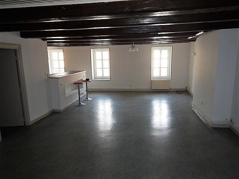 louer appartement 4 pièces 74 m² nancy photo 1