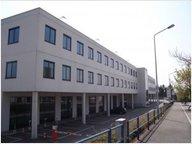 Bureau à louer à Luxembourg-Merl - Réf. 7103607
