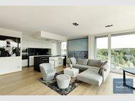 Wohnung zur Miete 1 Zimmer in Luxembourg-Kirchberg - Ref. 7248247