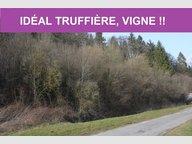 Terrain à vendre à Koeur-la-Grande - Réf. 5071495