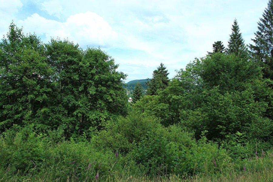 acheter terrain constructible 0 pièce 0 m² gérardmer photo 3