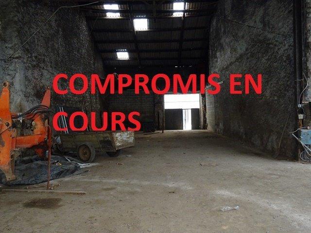 acheter entrepôt 0 pièce 250 m² kirsch-lès-sierck photo 1