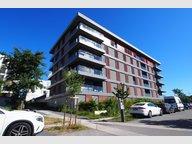Appartement à louer 1 Chambre à Luxembourg-Kirchberg - Réf. 6425479