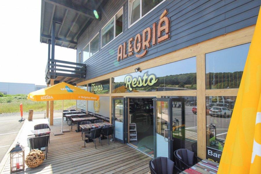 acheter restaurant 0 chambre 200 m² mertzig photo 6