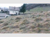 Terrain constructible à vendre à La Bresse - Réf. 7184535