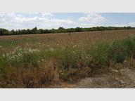 Terrain non constructible à vendre à Solgne - Réf. 5959831