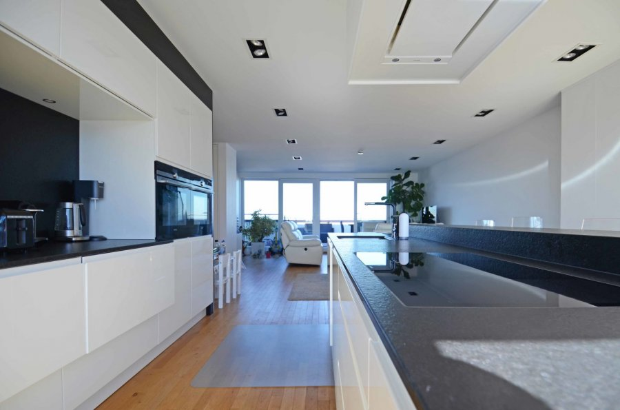 acheter penthouse 3 chambres 157.9 m² luxembourg photo 5