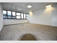 Office for rent in Capellen - Ref. 7082151