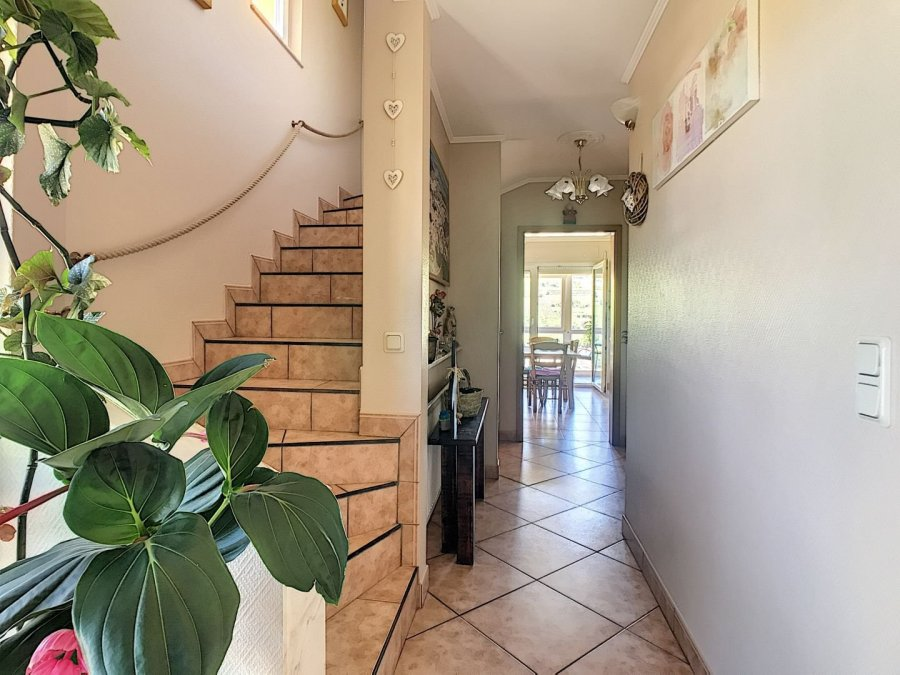 acheter maison 5 chambres 300 m² grevenmacher photo 4
