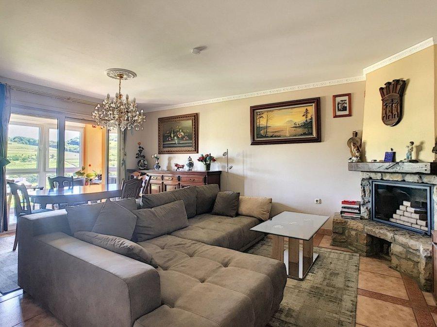 acheter maison 5 chambres 300 m² grevenmacher photo 5