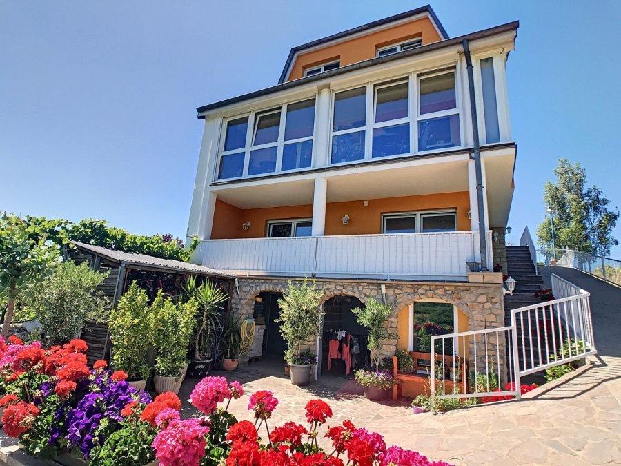 acheter maison 5 chambres 300 m² grevenmacher photo 2