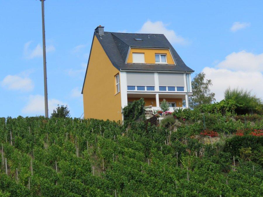 acheter maison 5 chambres 300 m² grevenmacher photo 1