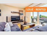 Apartment for rent 2 bedrooms in Leudelange - Ref. 7167911
