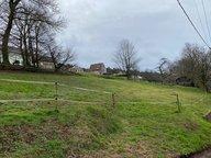 Terrain constructible à vendre à Phalsbourg - Réf. 7169719