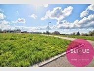 Terrain constructible à vendre à Saint-Gorgon - Réf. 7178935