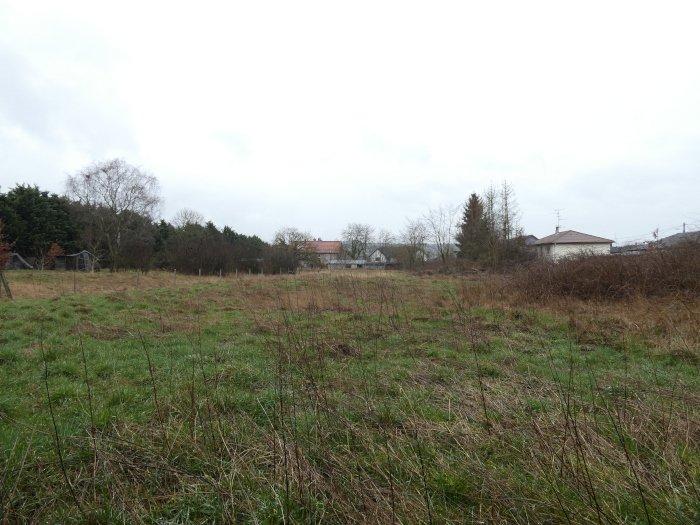 Terrain constructible à vendre à Freistroff