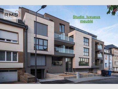Studio for rent 1 bedroom in Luxembourg-Limpertsberg - Ref. 6407111