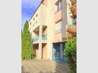 Appartement à louer F1 à Metz - Réf. 6285511