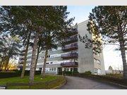 Appartement à louer 1 Chambre à Bertrange - Réf. 5843911