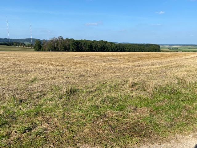 Terrain non constructible à vendre à Biwer