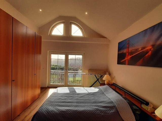 haus kaufen 6 zimmer 350 m² palzem foto 6