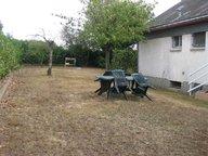Maison à vendre F3 à Segré - Réf. 4931543