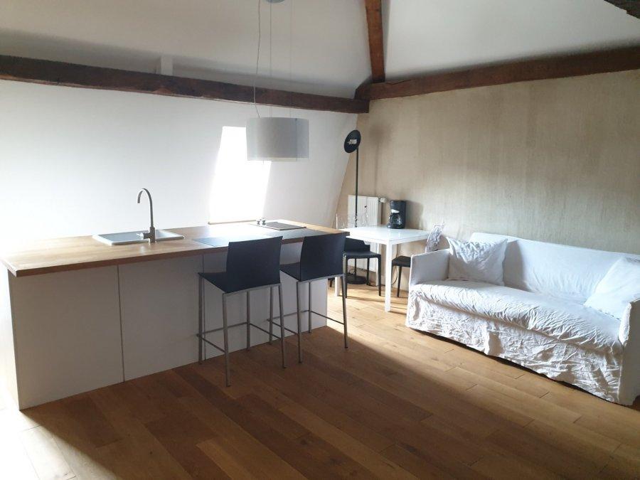 louer studio 1 chambre 50 m² roodt-sur-syre photo 3
