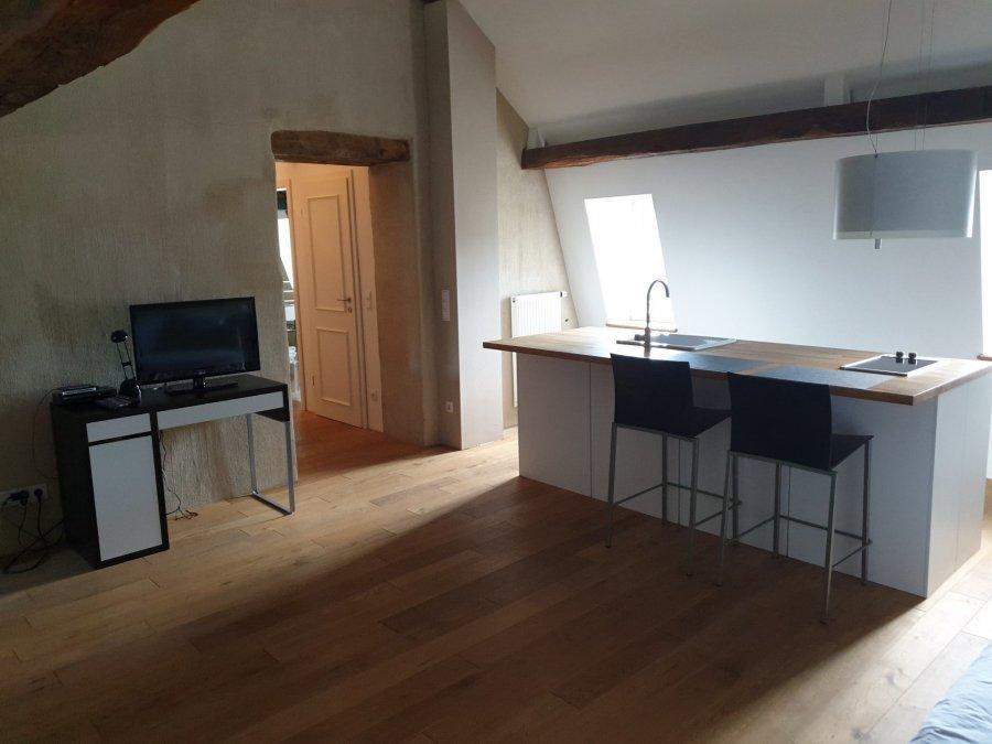 louer studio 1 chambre 50 m² roodt-sur-syre photo 2