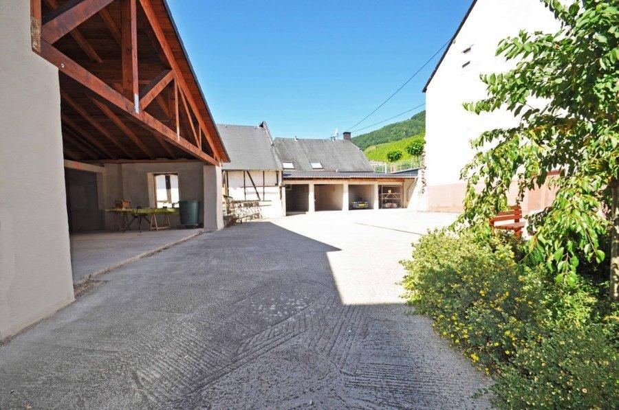 wohnung kaufen 4 zimmer 180 m² piesport foto 4